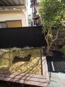 神奈川県唯一(!?)のミズゴケ湿原