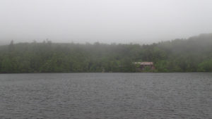 霧の白駒池